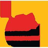Lakeshore Excellence Foundation Logo